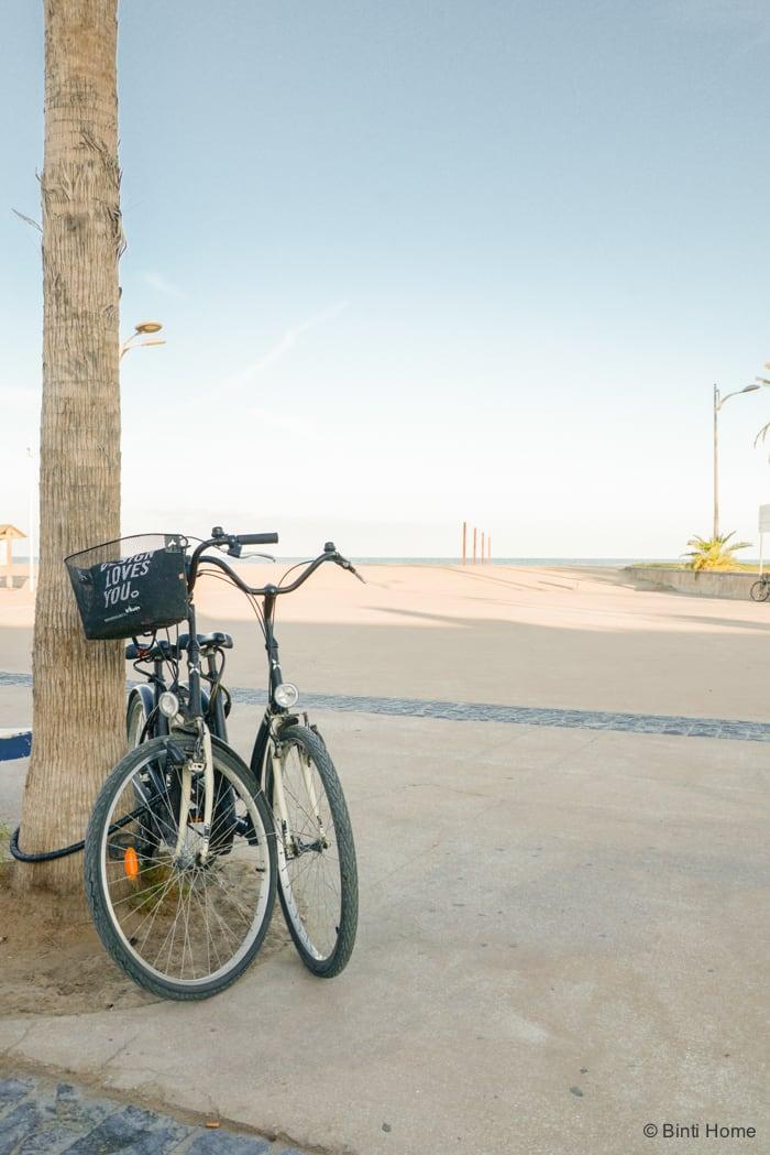 La Mas Bonita Valencia fietstour ©BintiHome
