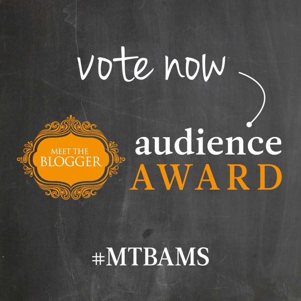 meet the blogger audience award