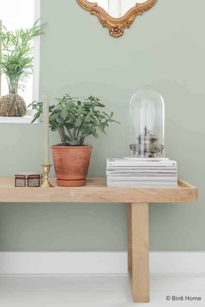 Inspiratie Woonkamer Groen : Restyling groene wand woonkamer ...
