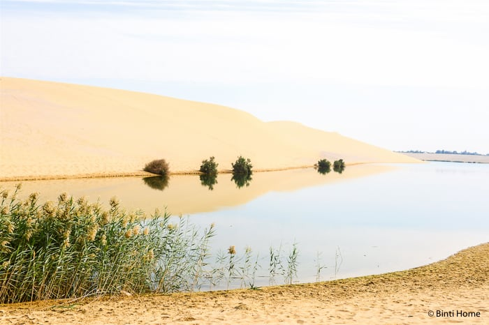 Magic Lake Egypt Fayoum Experience This is Egypt campaign ©BintiHome