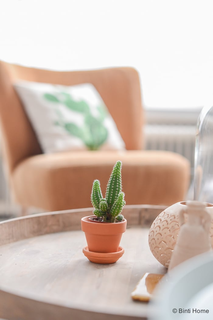 mini cactus in een terracotta pot op de salontafel ©BintiHome-5