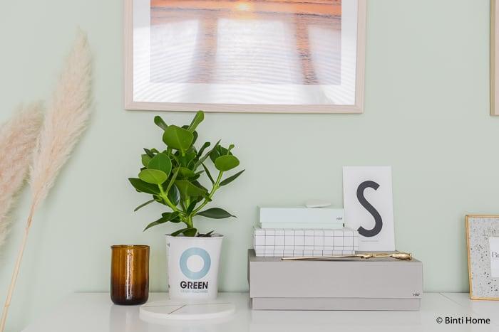 Ogreen planten Binti Home styling ©BintiHome-7