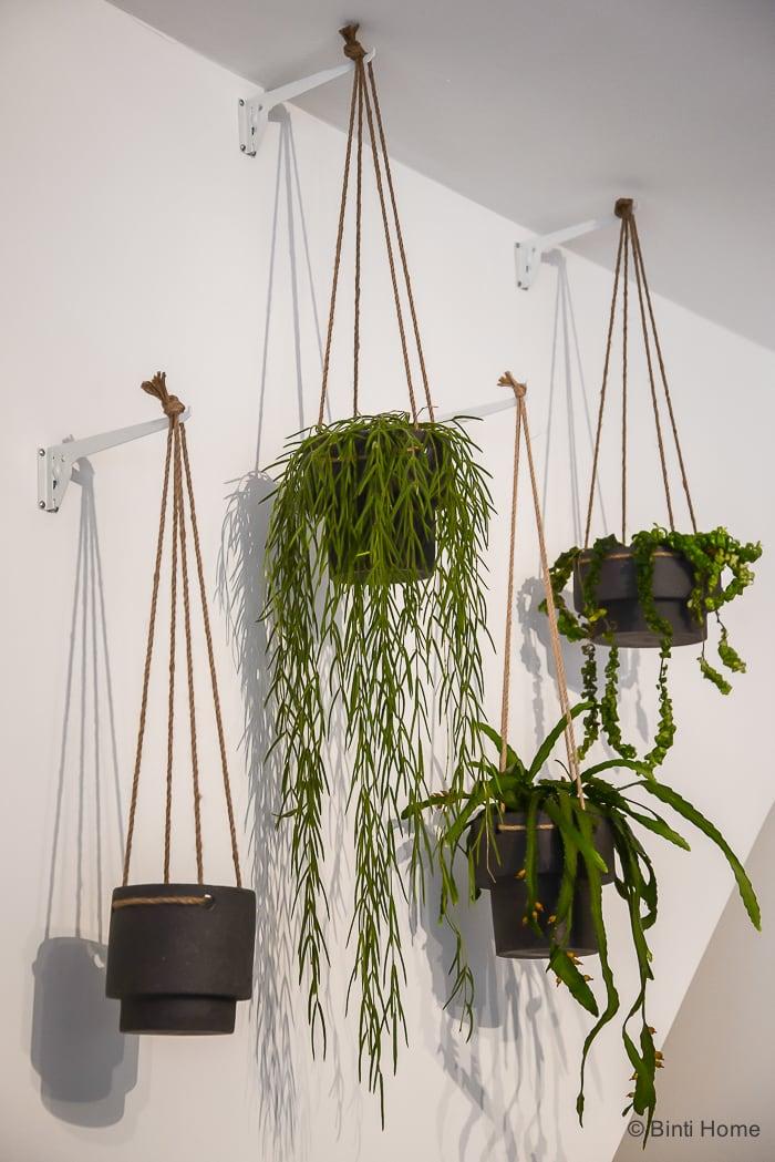 Planthangers green Ferm Living Misc Amsterdam conceptstore ©BintiHome