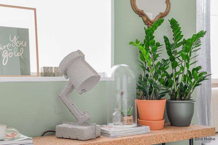 MooiWatPlantenDoen Zamioculcas plant van de maand ©BintiHome-3
