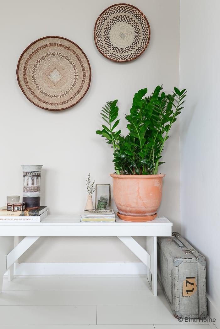 MooiWatPlantenDoen Zamioculcas plant van de maand ©BintiHome-7