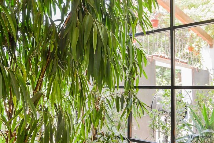 Interior inspiration restaurant Ampersand Zamalek Cairo windows steel ©BintiHome