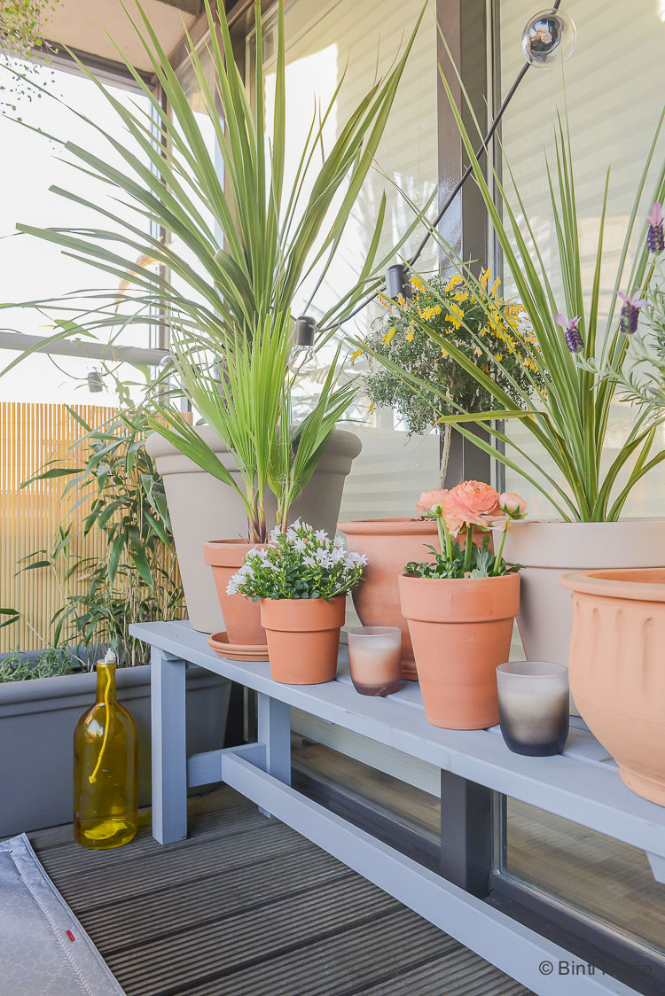 Balkon inspiratie klein balkon inrichten met veel planten denim drift ©BintiHome