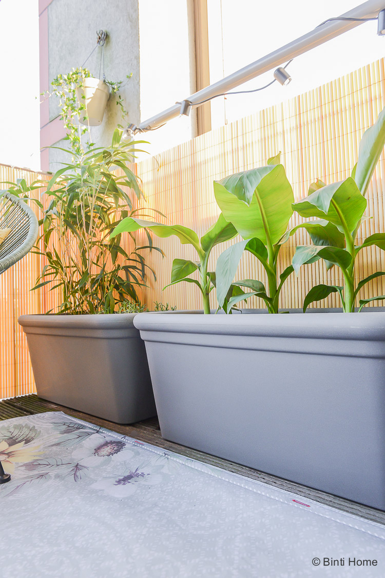 Balkon inspiratie klein balkon inrichten met veel planten Allure Doppio square Elho ©BintiHome