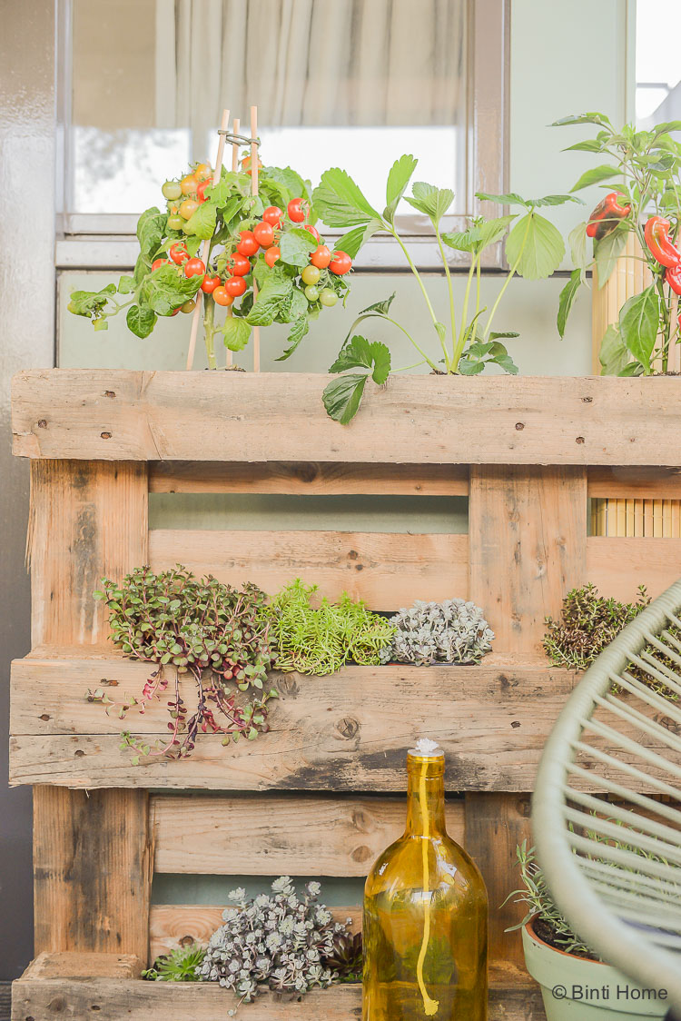 balkon inrichten balkon inspiratie met veel planten en dutch design. Black Bedroom Furniture Sets. Home Design Ideas