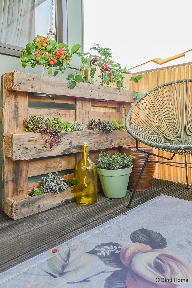 Balkon inspiratie klein balkon inrichten met veel planten vertical garden fruit en groente planten ©BintiHome
